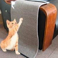 Rascador protector de sofa